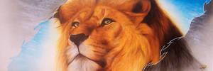 lion by DMaerografie