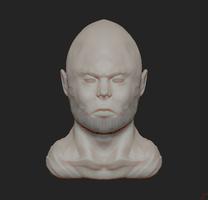 Face Sculpt #1 by Dmeville