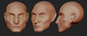 Face Sculpts by Dmeville