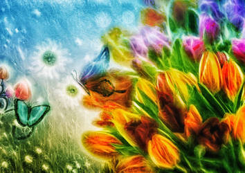 Farfalle e fiori by hiram67