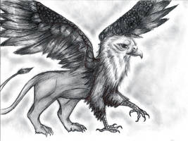 First griffin I ever finished by Your-Typical-Tyrant