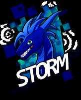 Storm Print Design by Kelskora