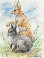 Watership Down by SinisterVibe