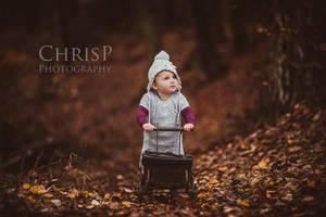 autumn walk by C-h-r-i-s-P