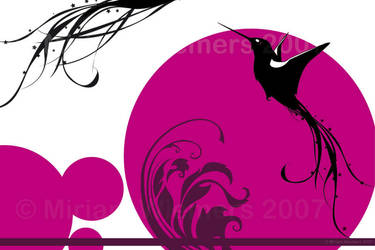 Rising Kolibri by ginee