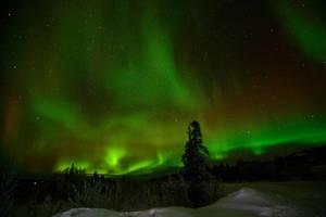 Aurora Hunting 2 by ymmijofmyself