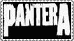Pantera by old-mc-donald