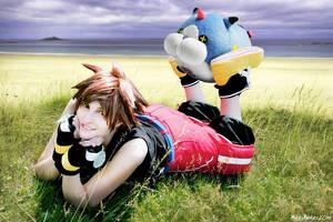 Sora - Meow Wow by SoraPaopu