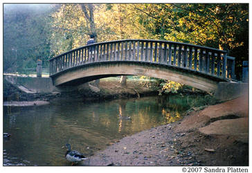 Bridge by invisikitty
