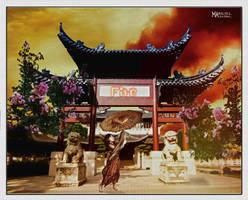 Asiatic House by Marilis5604