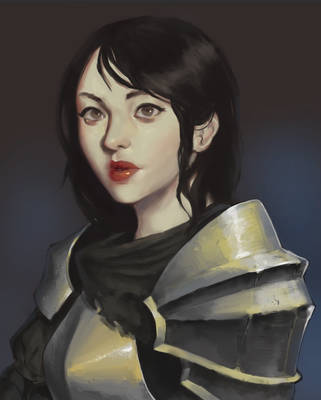 Portrait Study of a Knight by MisterDharc