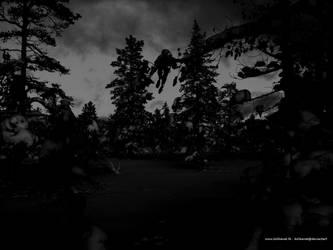 Dark winter landscape by kolibanat