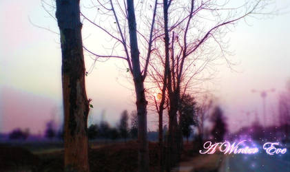 A fall Winter Evening by kulbirsingh