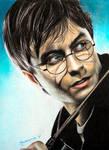 Harry Potter by Joanna-Vu