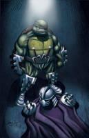 TMNT Tribute Raphael by Ninja-Turtles