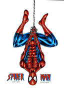 Spider-man - Peter Parker by kiborgalexic