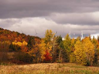 Maine Landscape Unedited. by XpiecemealX