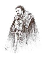Game of Thrones - Eddard Stark by gillendil
