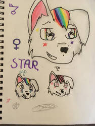Star by zoroarkultramoon