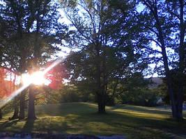 Sunset by robinmblake