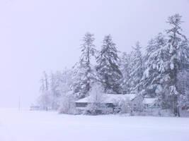 Winter beach in Maine by sataikasia