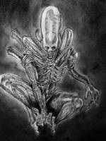 Big Chap Alien drawing by DiegoE05