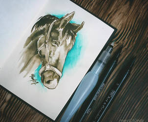 Horse Head by eskitenekekutu