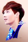EXO-M Lay (Zhang Yixing) - WIP by ExoPanda