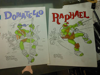 WIP Donnie and Raphael by EJJS