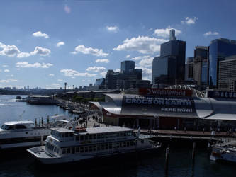 Sydney Harbour by miorio