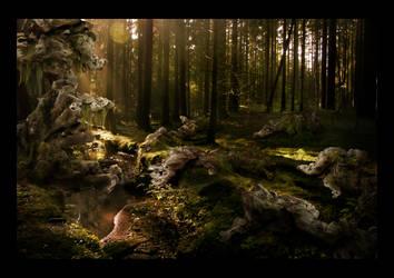 The Stone Garden by miorio