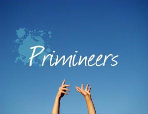 Primineers's Profile Picture
