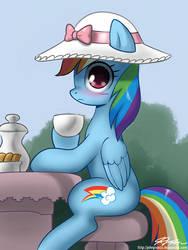 Tea Party Dashie by johnjoseco