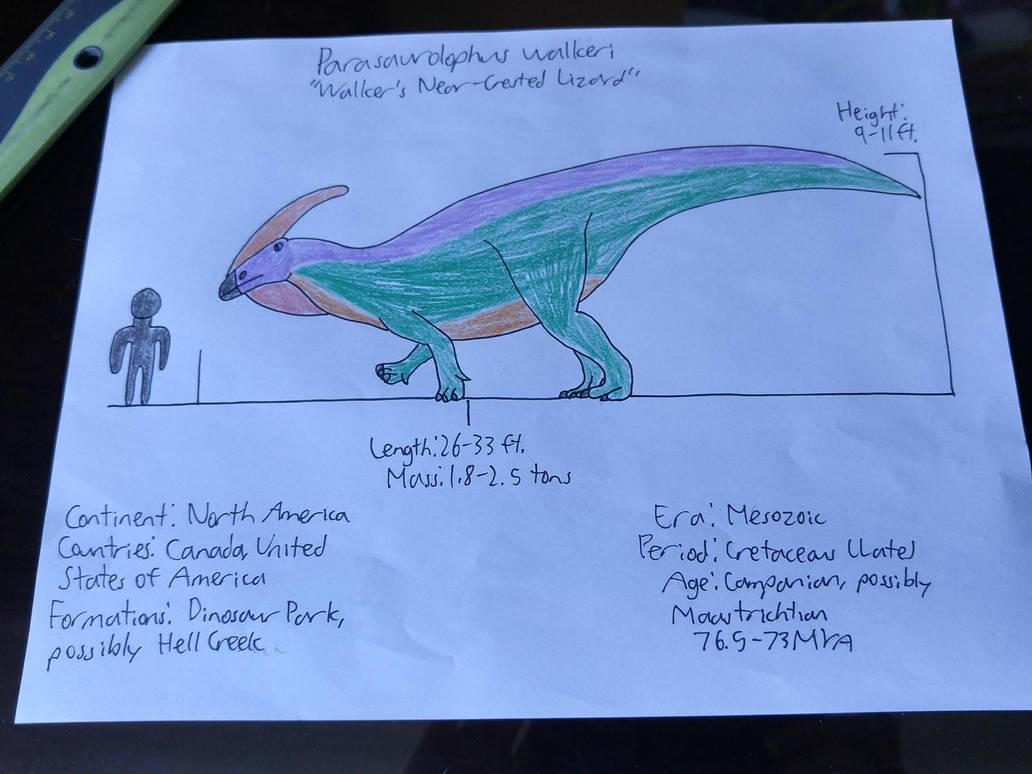 Near-crested ornithopod by IMemeEverything