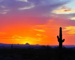 Sonora Twilight by flatsix911