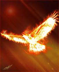 Phoenix by Consolous
