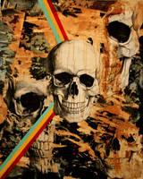 Skull by Evlisking