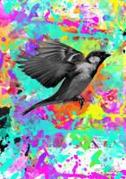Sparrow by Evlisking