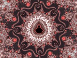 Octopus Mandala by FractalMonster