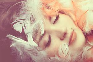 feathers. by dorguska