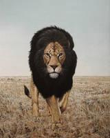 The Black Maned Lion by CitizenOlek