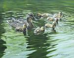 Mallard with Ducklings by CitizenOlek