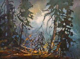 Above Johnston Creek by artistwilder