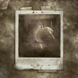 the swan by XeyeronikX