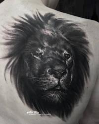 Lion by tikos