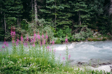 Memories: Lake Louise 3 by HYP3R--CH1CK