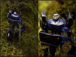 Forest guardian by Schizoplane
