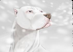 Lumimyrskypitti by Goenkeel