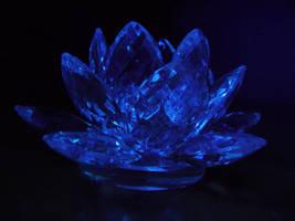 Blacklight Lotus Stock VI by Melyssah6-Stock