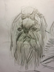 dog Chewbacca  by ikafox